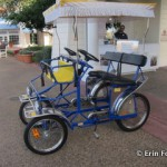 Surrey Bike Rentals at Disney World by Erin Foster
